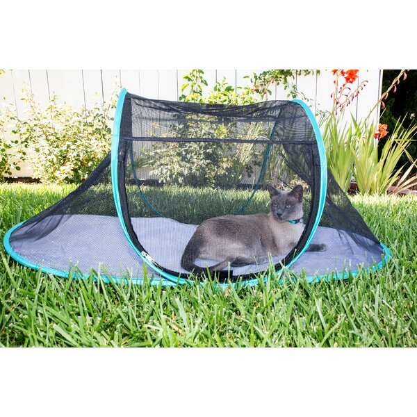 Cat Playpen With Storage Pouch By Nala And Company.