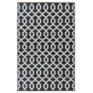 Lightweight Reversible Coco Brown Ivory Indoor Outdoor Area Rug