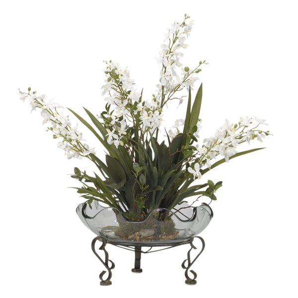 Baby Dendrobium Orchids Floral Arrangement in Glass Pot on Stand by Bloomsbury Market