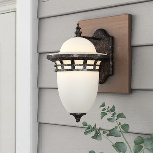 Compare & Buy Towry 1-Light Outdoor Wall Lantern By Fleur De Lis Living