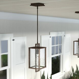 Best Reviews Borkowski 1-Light Outdoor Hanging Lantern By Mercury Row