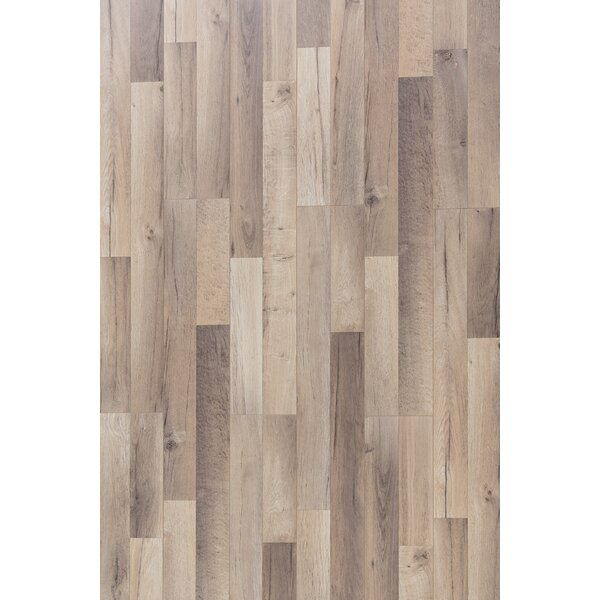 Elegant 8 x 48 x 12mm Oak Laminate Flooring in Summer Palace by Christina & Son