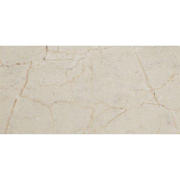 Harrison 3 x 6 Marble Subway Tile in Crema Marfil Classico by Itona Tile
