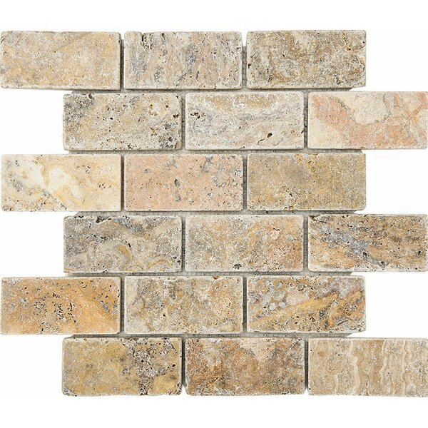 Scabos Tumbled 2 x 4 Stone Mosaic Tile by Parvatile