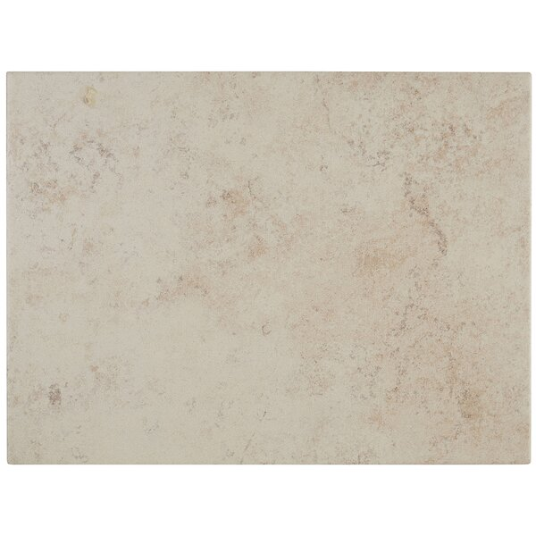 Jacobson 9 x 12 Ceramic Field Tile in Bone by Itona Tile