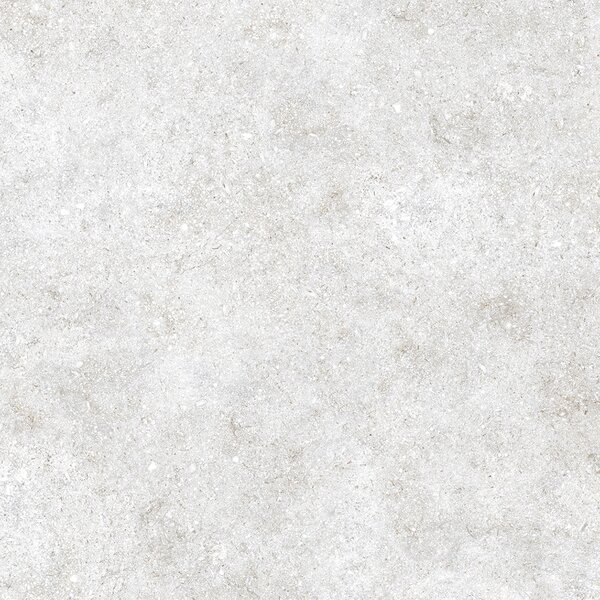 24 x 24 Glazed Porcelain Field Tile in Gray by Multile