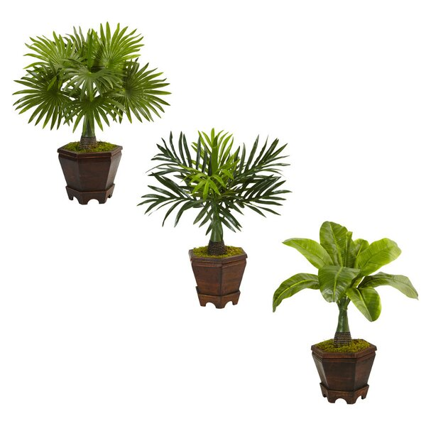 Artificial Assorted Mini Floor Palm Tree in Planter by Bay Isle Home