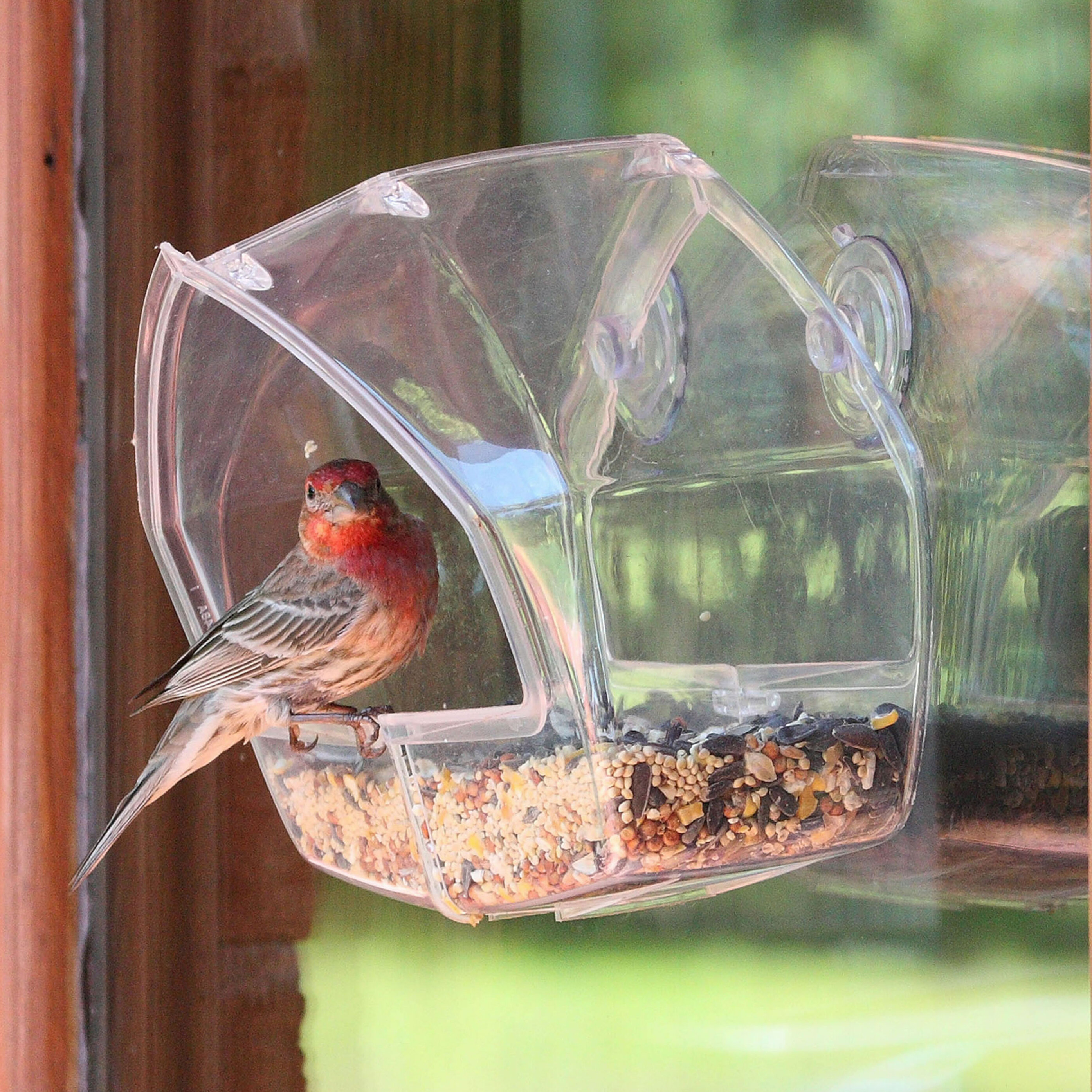 Clear Window Bird Feeder Birdhouse For Viewing Wild Birds From Inside 8C