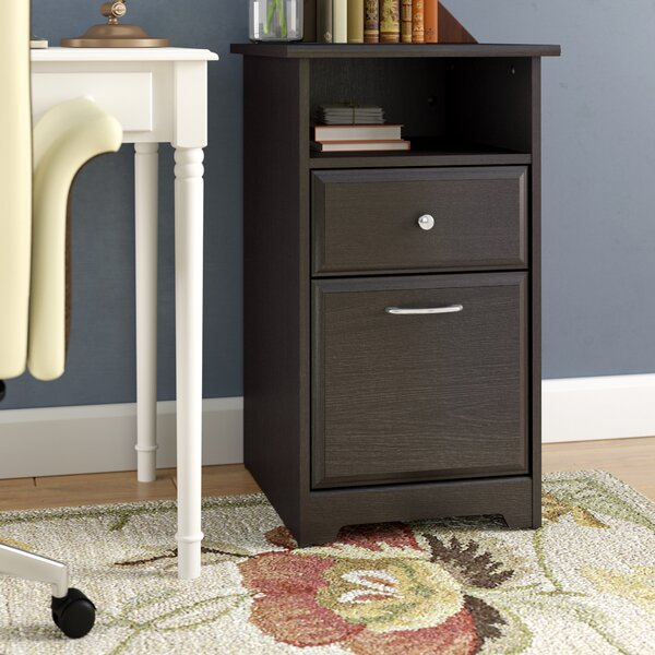 Hillsdale 2-Drawer Vertical Filing Cabinet by Red Barrel Studio
