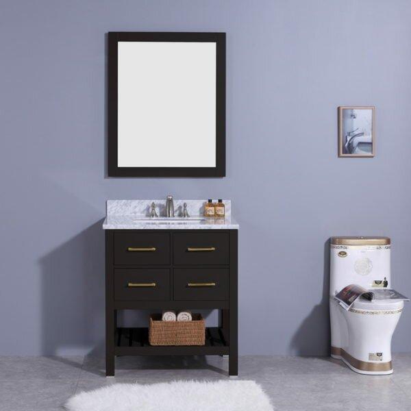 Rosemont 31 Single Bathroom Vanity Set with Mirror by Breakwater Bay