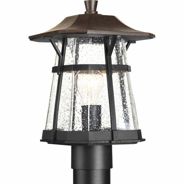 Triplehorn 1-Light Antique Lantern Head in Espresso by Alcott Hill