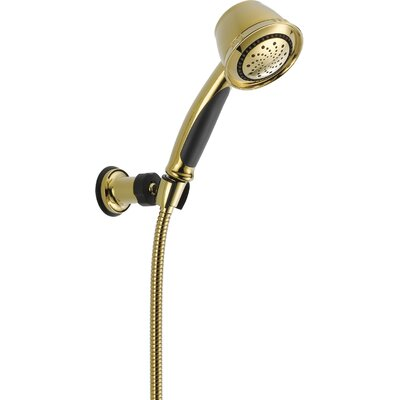 Shower Head Multi Handheld Touchclean Polished Brass photo