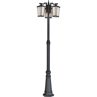 Buy luxury Esters Outdoor 3-Light 88.5 Post Light By Brayden Studio