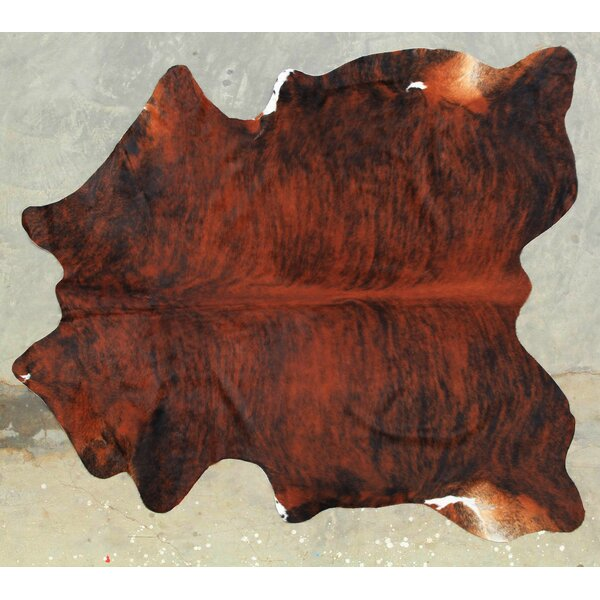 Natural Exotic Cowhide Dark Brown Area Rug by Modern Rugs