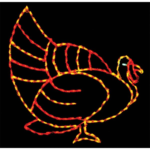 Turkey 200 Light LED Rope Light by Brite Ideas