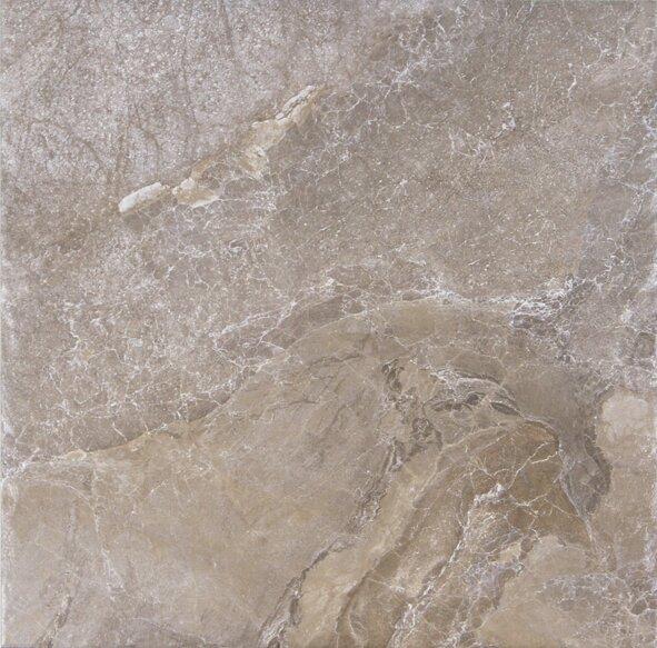 Canyon 13 x 13 Porcelain Field Tile in Marron by Tesoro