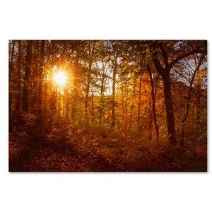 Autumn Sunset Photographic Print on Wrapped Canvas by Trademark Fine Art