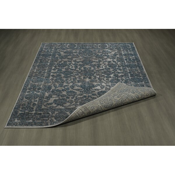 Attah Blue/Gray Area Rug by Everly Quinn