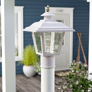Halliday Outdoor 1-Light Lantern Head By Breakwater Bay Outdoor Lighting