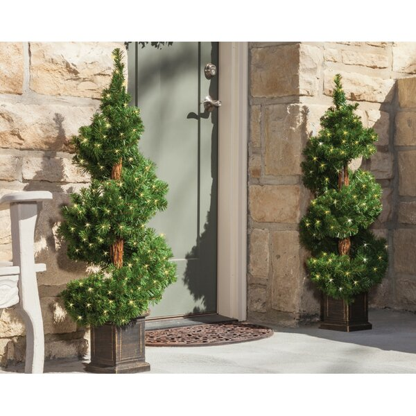 Potted Spiral Tree Boxwood Floor Topiary in Pot (Set of 2) by The Holiday Aisle
