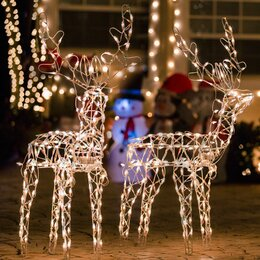 Outdoor christmas decorations youll love wayfair outdoor christmas light displays mozeypictures Choice Image