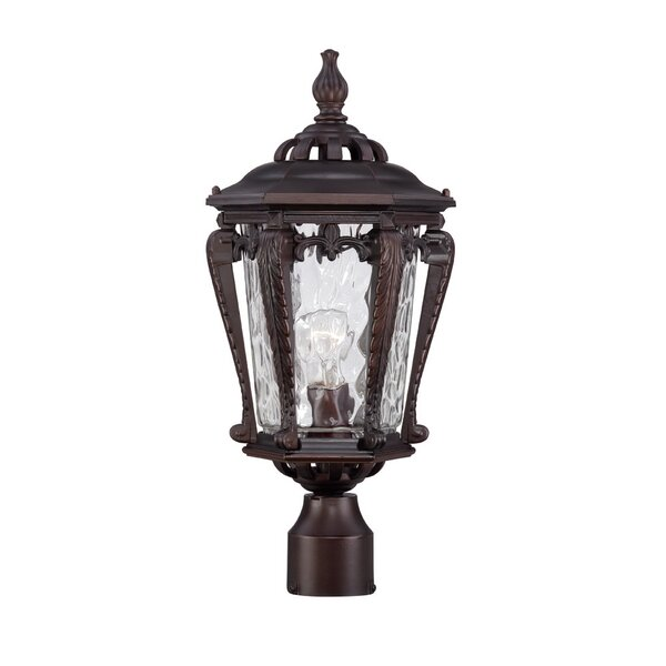 Berrios Outdoor 1-Light Lantern Head by Fleur De Lis Living
