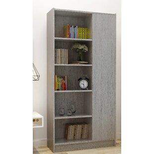 Fenske Modern Standard Bookcase