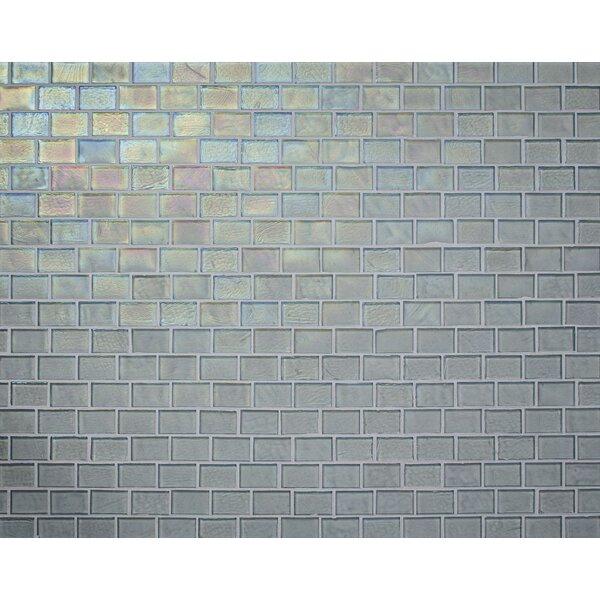 Studio 0.88 x 1.38 Glass Mosaic Tile in Clear by Kellani