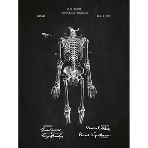 Vintage Inventions 'Anatomical Skeleton 1911' Graphic Art in Chalkboard/White Ink by Inked and Screened