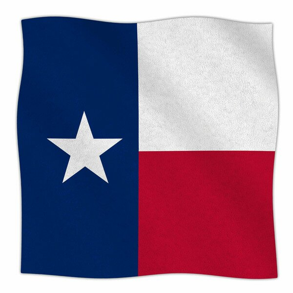 Texas Flag by Bruce Stanfield Fleece Blanket by East Urban Home