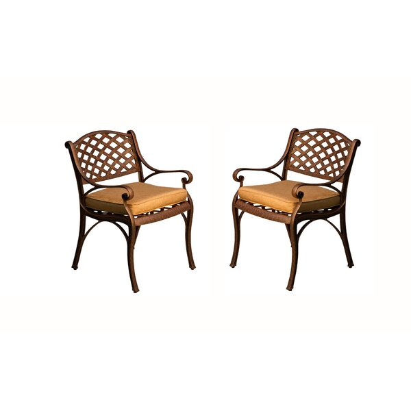 Amelio Patio Dining Chairs with Cushions (Set of 2) by Darby Home Co