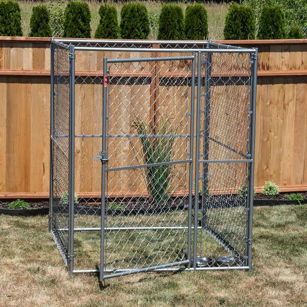 Lucky Dog™ Steel Modular Chain Link Yard Kennel by Jewett Cameron