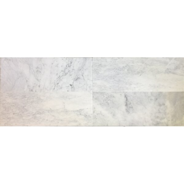 12 x 12 Carrara Marble Field Tile in White/Gray (Set of 3) by Bella Via
