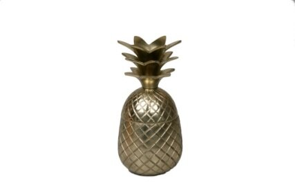 Wheeler Pineapple 24 oz. Aluminum Cup by Bay Isle Home