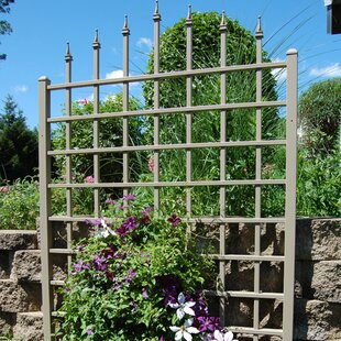 trellises youll love wayfair