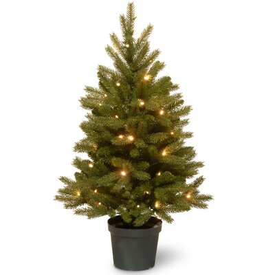 jersey fraser 3 green fir artificial christmas tree with 35 warm white led lights