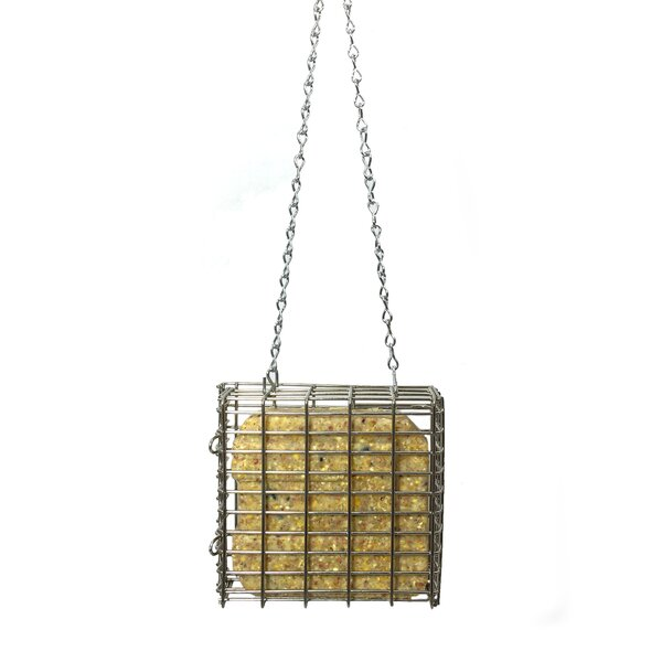 Stainless Steel Suet Bird Feeder by Droll Yankees