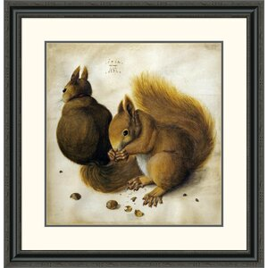 'Two Squirrels, One Eating a Hazelnut' by Albrecht Durer Framed Painting Print by Global Gallery