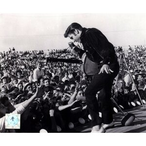 Elvis Presley on Stage with Fans (#1) Photographic Print by Evive Designs