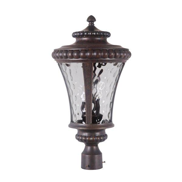 Essie Outdoor 1-Light Lantern Head by Fleur De Lis Living