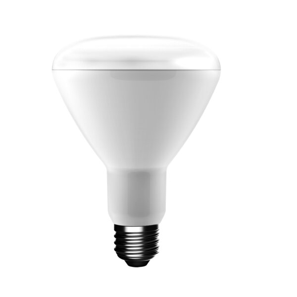 65W BR30 LED Light Bulb (Set of 3) by uBrite