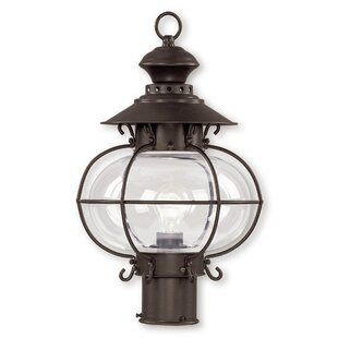 Looking for Shielo Outdoor 1-Light Lantern Head By Longshore Tides