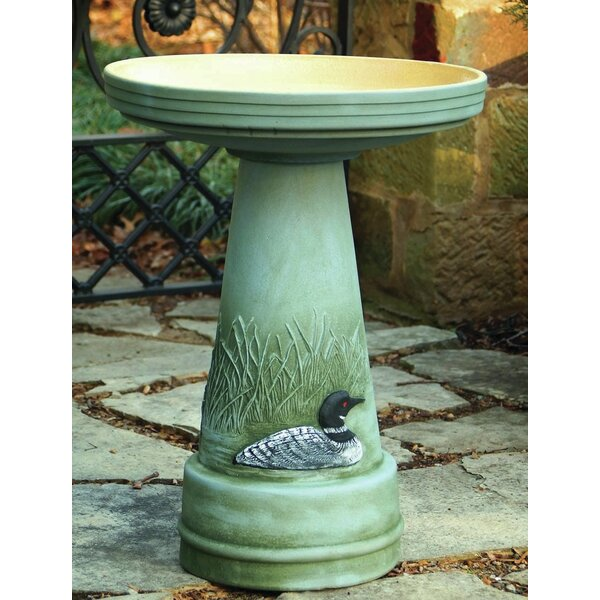 Burley Clay Handpainted Great Northern Loon Birdbath by Birds Choice
