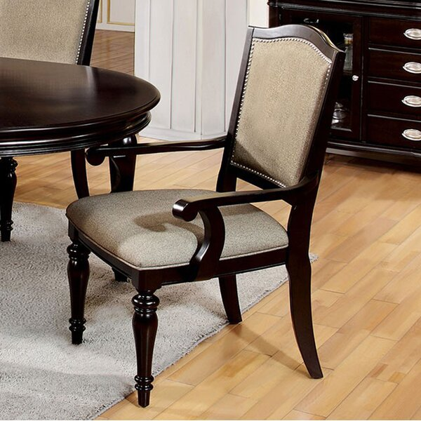 Arik Dining Arm Chair (Set of 2) by Darby Home Co