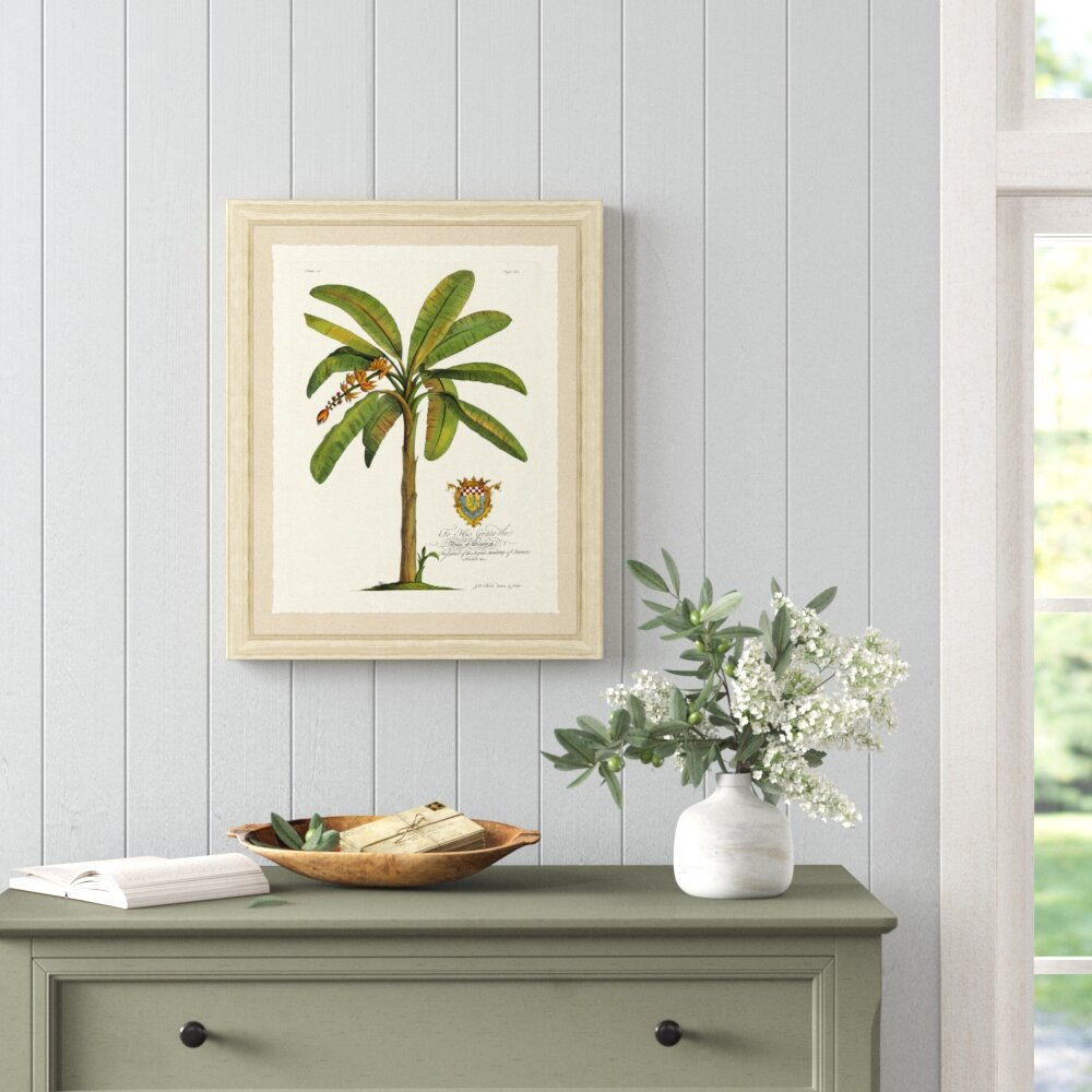 Phenomenal Banana Palm Tree Iii Picture Frame Print Machost Co Dining Chair Design Ideas Machostcouk