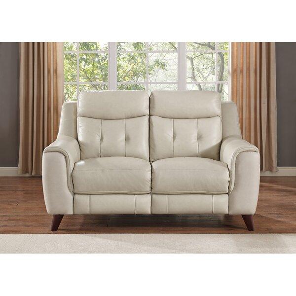Paramount Leather Reclining Loveseat by HYDELINE