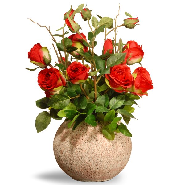 Spring Rose Flowers in Pot by National Tree Co.