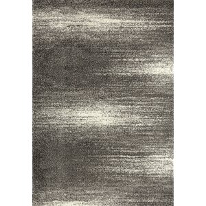 Raiden Contemporary Shag Gray Area Rug
