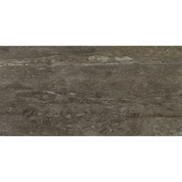 Veneto 16 x 32 Porcelain Field Tile in Noce by MSI