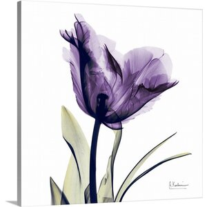 Purple Flower by Albert Koetsier Photographic Print on Wrapped Canvas by Great Big Canvas